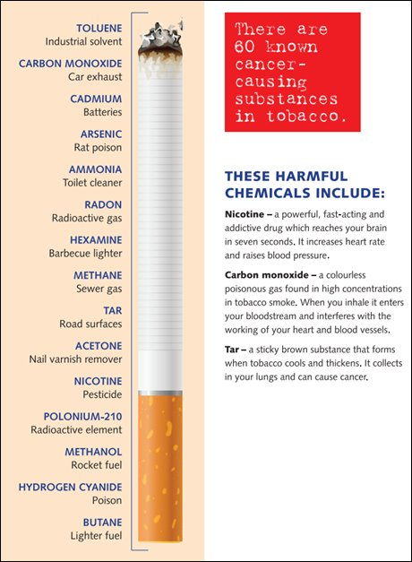 What's in a cigarette